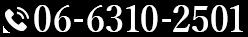 06-6310-2501